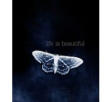 life is beautiful Photographic Print