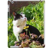 Mary Le Chat iPad Case/Skin