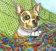 Chihuahua snuggles  by lesleypaints