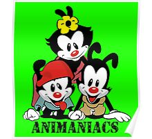 Animaniacs - cartoon Poster