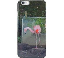 Ballet De Flamingo iPhone Case/Skin