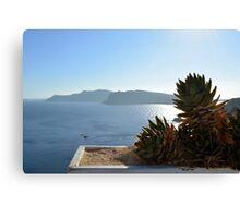 Cactus in Santorini, Greece Canvas Print