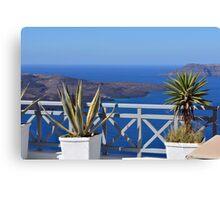 Plants in flower pots in Santorini, Greece Canvas Print