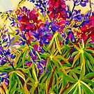 Lupins by marlene veronique holdsworth