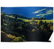Late Afternoon in the Black Forest........... Poster