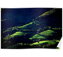 The last Rays of Sun........Black Forest Poster