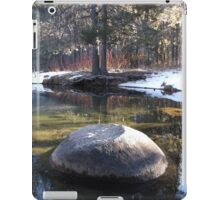 Reflections on an Winter Pond iPad Case/Skin