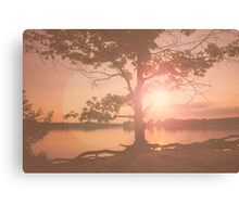 Nature background. Sunset behind a large tree. Colors: pink & beige. The lake  in the evening Canvas Print