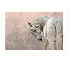 Pony of America Art Print