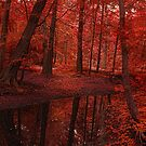 The Red Forest by EbyArts