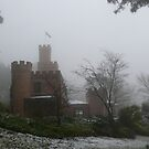 Castle in the Snow by Larry Lingard-Davis