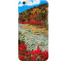 AUTUMN,BLUE RIDGE PARKWAY iPhone Case/Skin