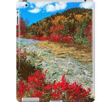 AUTUMN,BLUE RIDGE PARKWAY iPad Case/Skin