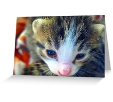 hi there sweetie.... Greeting Card
