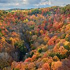 Autumn Joy At Dundas Peak by jules572