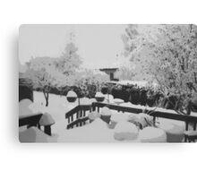 Winter In The Garden  Canvas Print