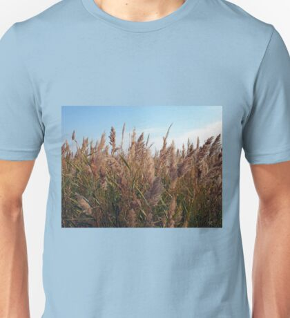 Reeds at the lake Unisex T-Shirt