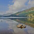 Snowdonia: Llyn Gwynatt Reflections by Rob Parsons