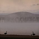 Spring Sun Rise at Lake Burley Griffin (Canberra/ACT/Australia) (1) by Wolf Sverak