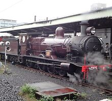 Steam Engine 3265 @ Central Station, Sydney, Australia by muz2142