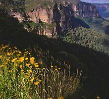 Grose Valley at Blackheath by Erik Schlogl