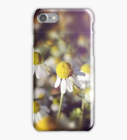 Flower background: daisies in the sun iPhone Case/Skin