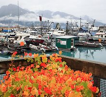 Flowers in Valdez by zumi