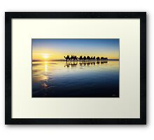 The Cable Beach Camels Framed Print