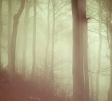 Dark yellow forest with a mysterious mist Sticker