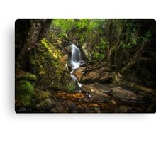 The Crater Creek Falls Canvas Print