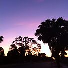 Melbourne Sunset - Australia by Angela Lo Rosso