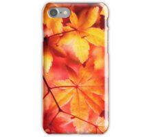 Orange Golden Maple Autumn Leaves iPhone Case/Skin