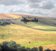 Thumper Flies Down The Coombes Valley - HDR by Colin  Williams Photography