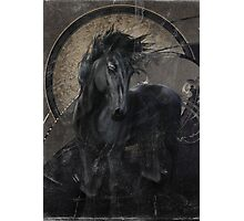Gothic Friesian Horse Photographic Print