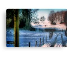 The Snow Fields Metal Print