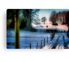 The Snow Fields Canvas Print