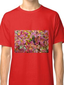 Background of bright red and yellow leaves of a bush Classic T-Shirt