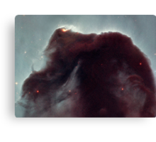 The Horsehead Nebula Canvas Print