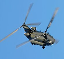 Chinook by © Steve H Clark Photography