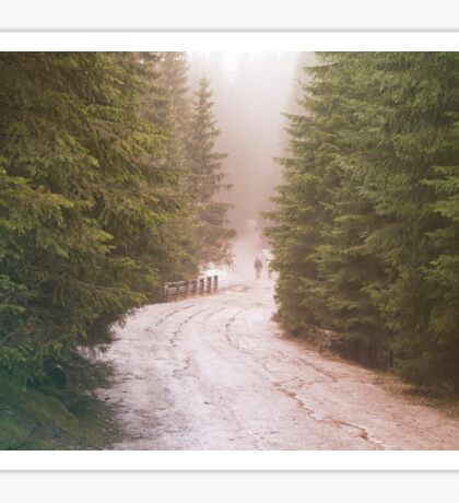 Dirt road through the coniferous forest. The wanderers on the road. Hipster colors Sticker