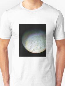 Detail of Triton T-Shirt