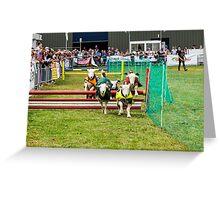 Lamb Racing aka Lamb National Greeting Card