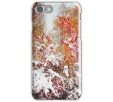 Colorful Fireworks at Late Autumn  iPhone Case/Skin