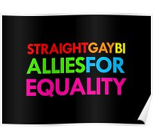 Straight, Gay, Bi - Allies For Equality Poster