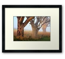 Three giants Framed Print