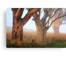 Three giants Canvas Print
