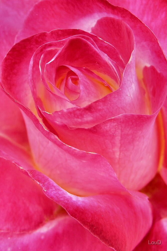 Pretty Pink - From My Mother's Secret Garden by LouD