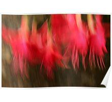Fuschian dancers Poster