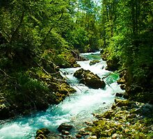 Slovenia by jokkmokk