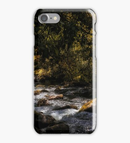 River Dart iPhone Case/Skin